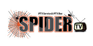 SPIDER NEWS NETWORKS | Spider News Products | News